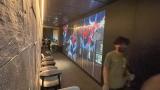 板神鐵板燒 神奇的LED透明牆 投影機技術之無縫融合拼接